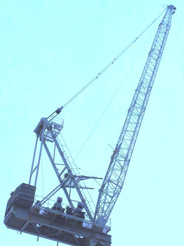 Crane at Backstage Condominium