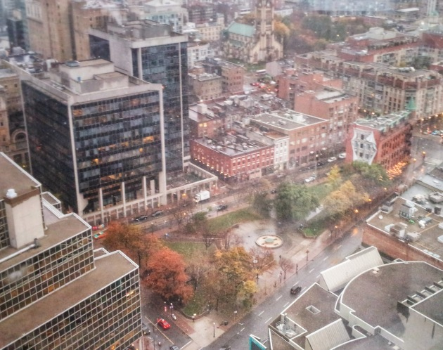 Berczy Park from the L Tower