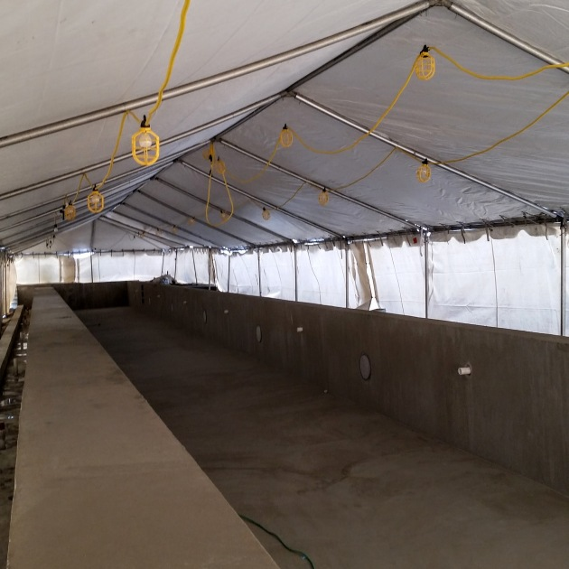 The pool is being prepared for waterproofing under the protection of the tenting.